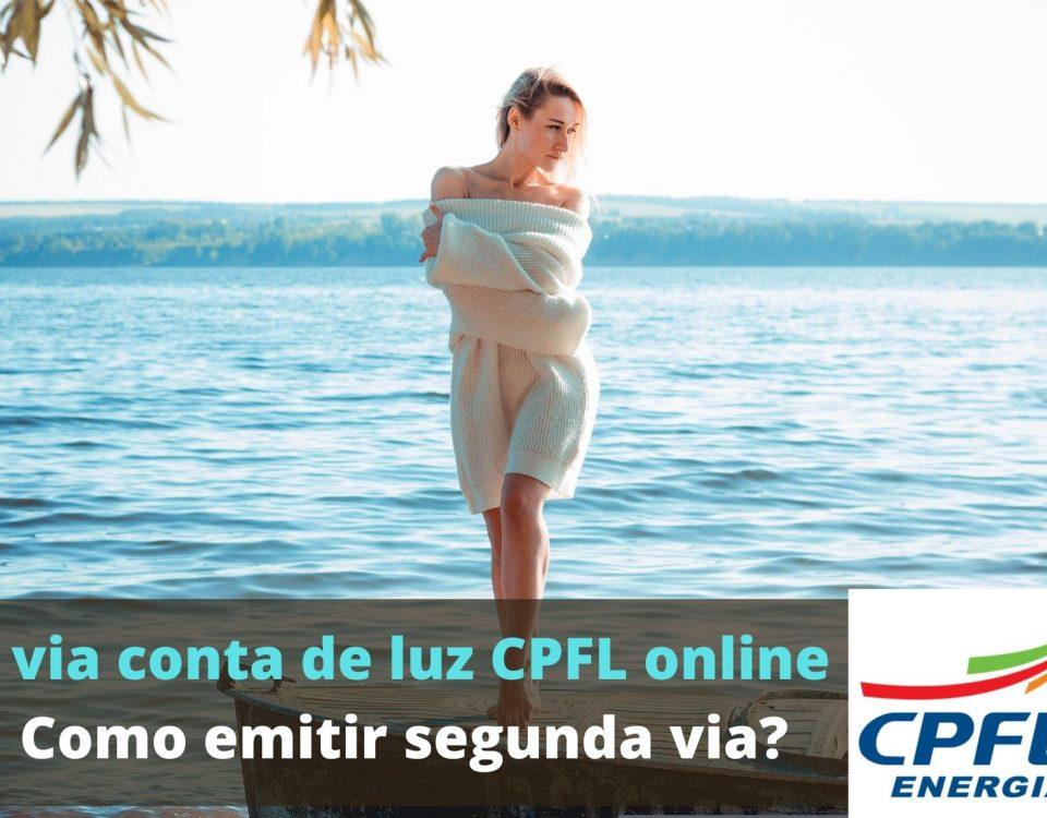 2 via de conta CPFL emitir